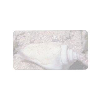 White hump-back conch (Strombus gibberculus albus) Personalized Address Label