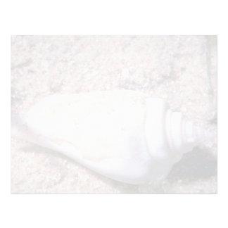 White hump-back conch (Strombus gibberculus albus) Custom Letterhead