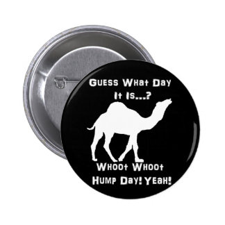 White Hump Day Camel Pinback Button