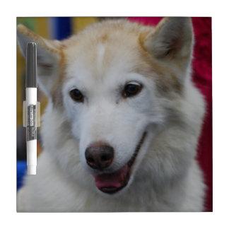 White Husky Dry-Erase Board
