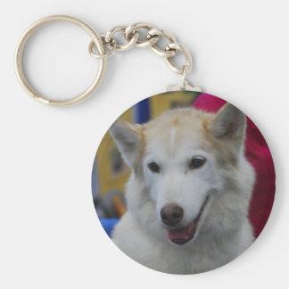 White Husky Keychain