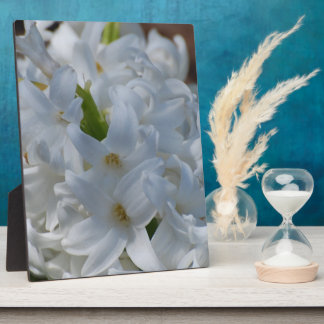 White Hyacinth Flowers Display Plaque