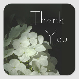 White Hydrangea Blossoms Thank You Stickers