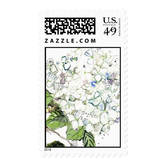 White Hydrangea, Close Up Postage