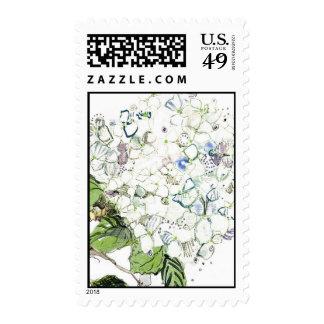 White Hydrangea, Close Up Stamp