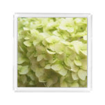 White Hydrangea flower background Acrylic Tray
