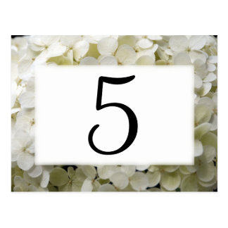 White Hydrangea Flower Table Numbers Postcard