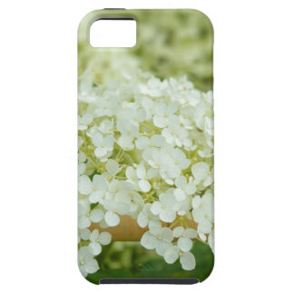 White hydrangea flowers iPhone 5 covers
