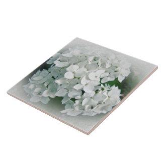 White Hydrangea Flowers Ceramic Tile