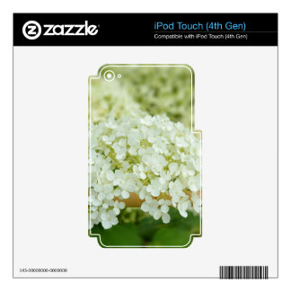 White hydrangea flowers iPod touch 4G decals