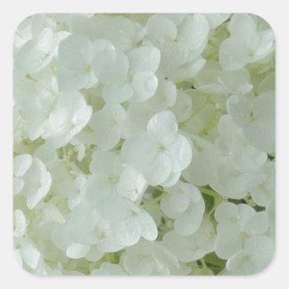 White Hydrangea Petals Square Sticker