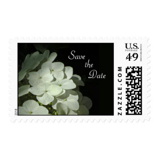 White Hydrangea Save the Date Postage
