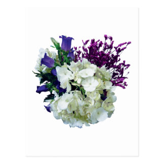 White Hydrangea With Canterbury Bells and Sage Postcard