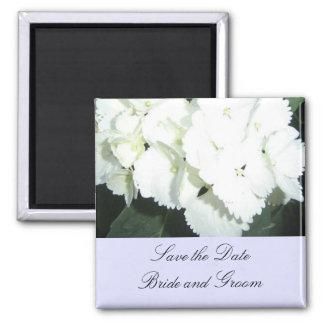 White Hydrangeas with Soft Blue Border Magnet