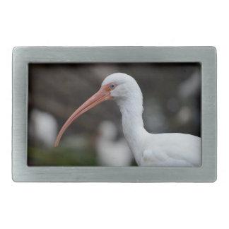 White ibis blue eyed bird feather image rectangular belt buckle