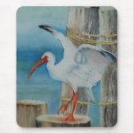 White Ibis by Peggy Allen Mousepad
