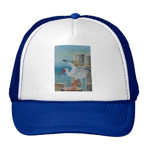 White Ibis by Peggy Allen Trucker Hat