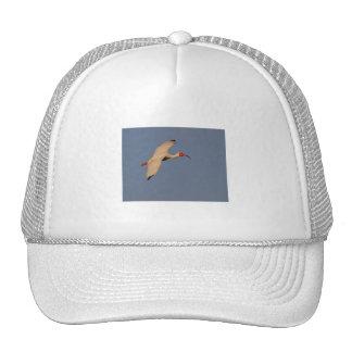 White Ibis in Flight Trucker Hat