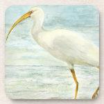 White Ibis on the Shore Beverage Coasters