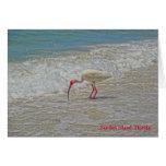 White Ibis Wading Bird on Sanibel Island Florida Card