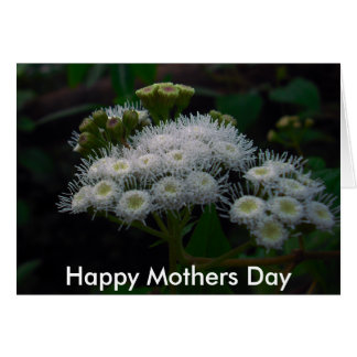 white ice, Happy Mothers Day Card