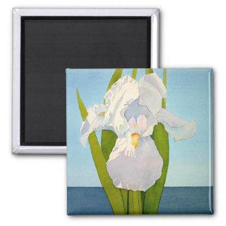 White Iris2 Magnet
