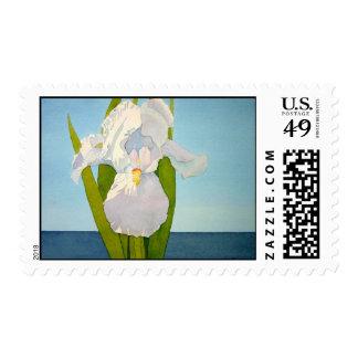 White Iris2 Postage