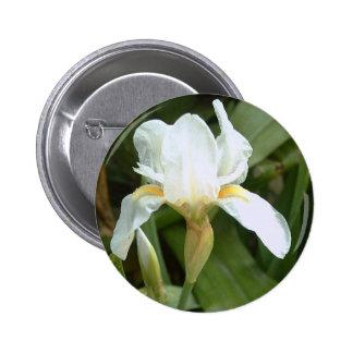 White Iris 4 Button