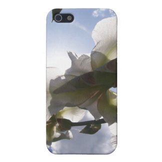 White Iris Cover For iPhone 5/5S
