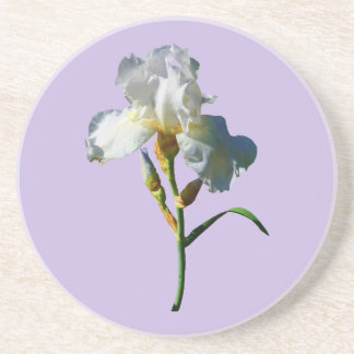 White Iris in Sunshine Beverage Coaster
