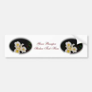 White Iris Oval Car Bumper Sticker