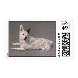 White Jack Russell Postage Stamp