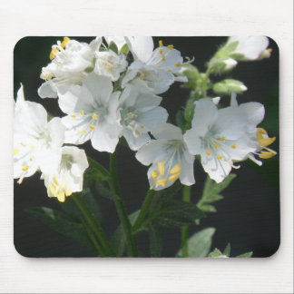 White Jacobs Ladder Mouse Pad