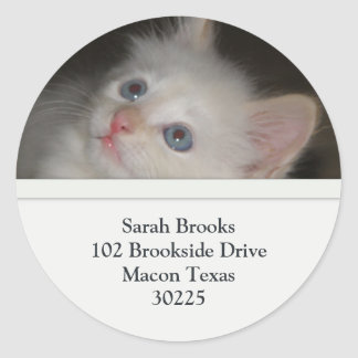 White Kitten Address Labels