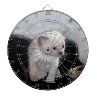 White kitten and the boot dartboard with darts