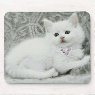 White Kitten Mouse Pad
