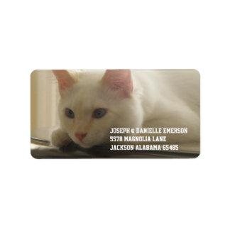 White Kitty Address Labels