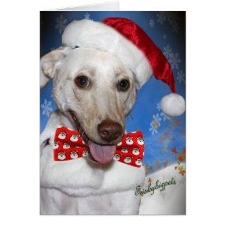White Lab Merry Christmas Cards
