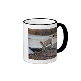 White Labrador near a lake Ringer Mug