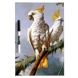 White Leadbeaters Parrots Tropical Birds painting Dry Erase White Board