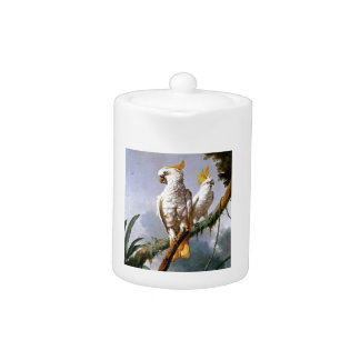 White Leadbeaters Parrots Tropical Birds painting