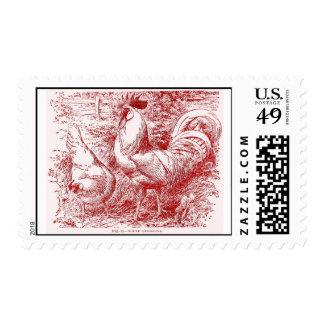 White Leghorn in red Stamp