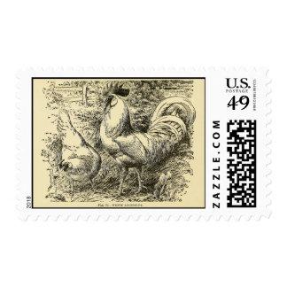 White Leghorn Postage