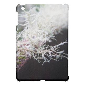 White Lichen iPad Mini Covers
