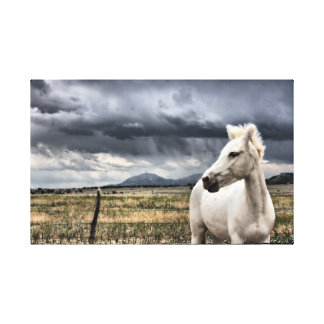 White Lightning Canvas Print
