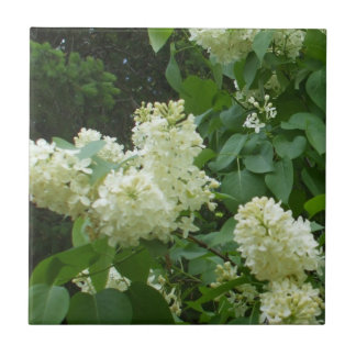 White Lilac Flowers on Bush Small Square Tile