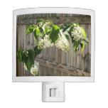 white lilac, flowers, spring, fence, bathroom