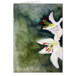 White Lilies, ©2006, KAS Greeting Card