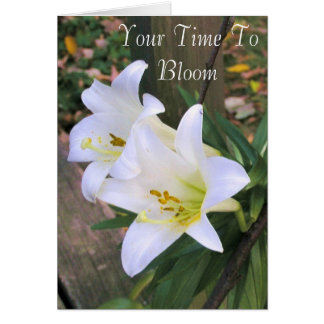 White Lilies Graduation Greeting Card