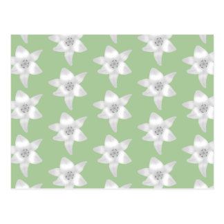 White Lilies Pattern on Green. Postcard